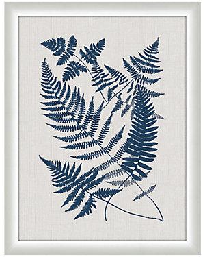 Bucler Ferns by Melissa Van Hise