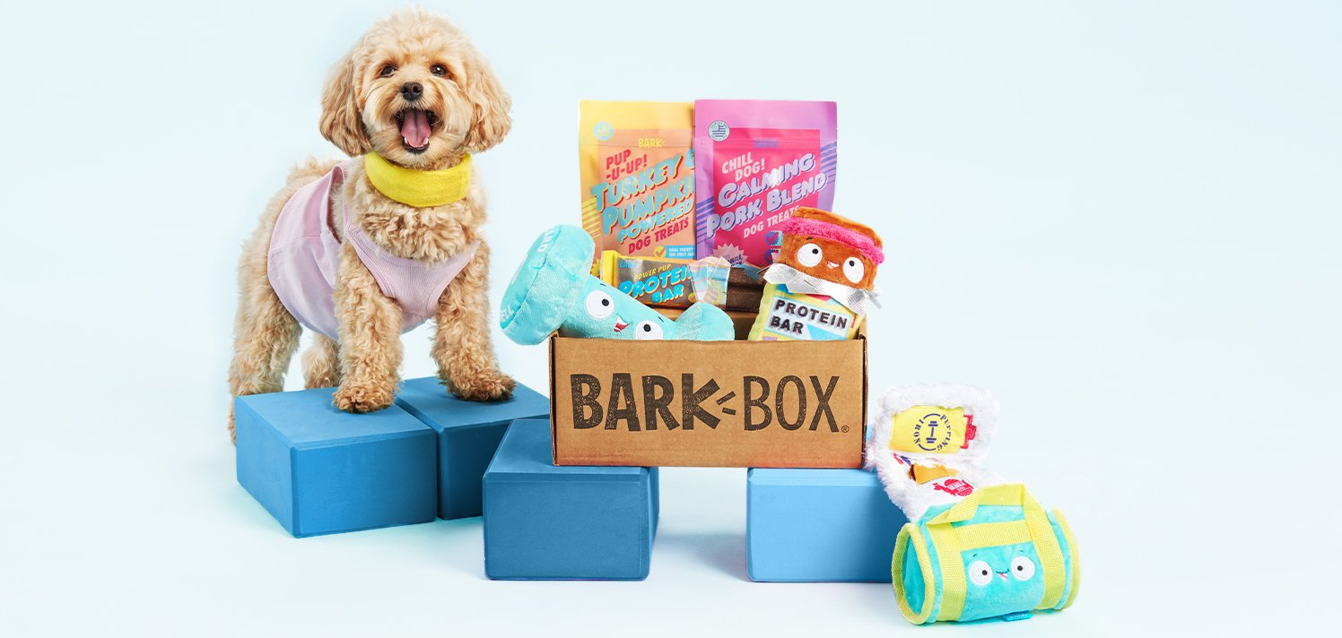BarkBox: RSVP to Get Your First Box for $15